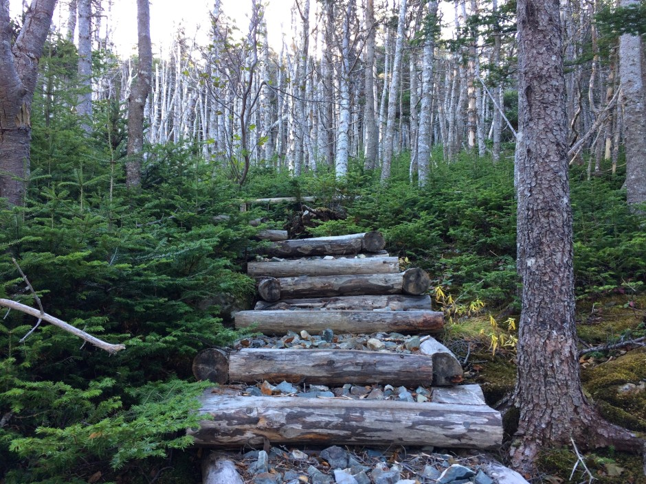 TrailView-Steps-BiscanCove